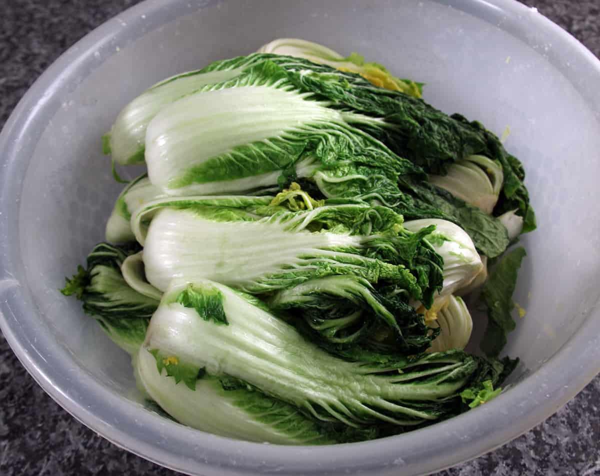 Kimchi and Kkakdugi recipe - Maangchi.com
