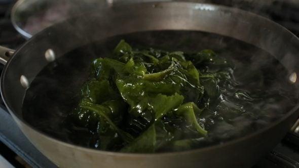 seaweed (miyeok: 미역)