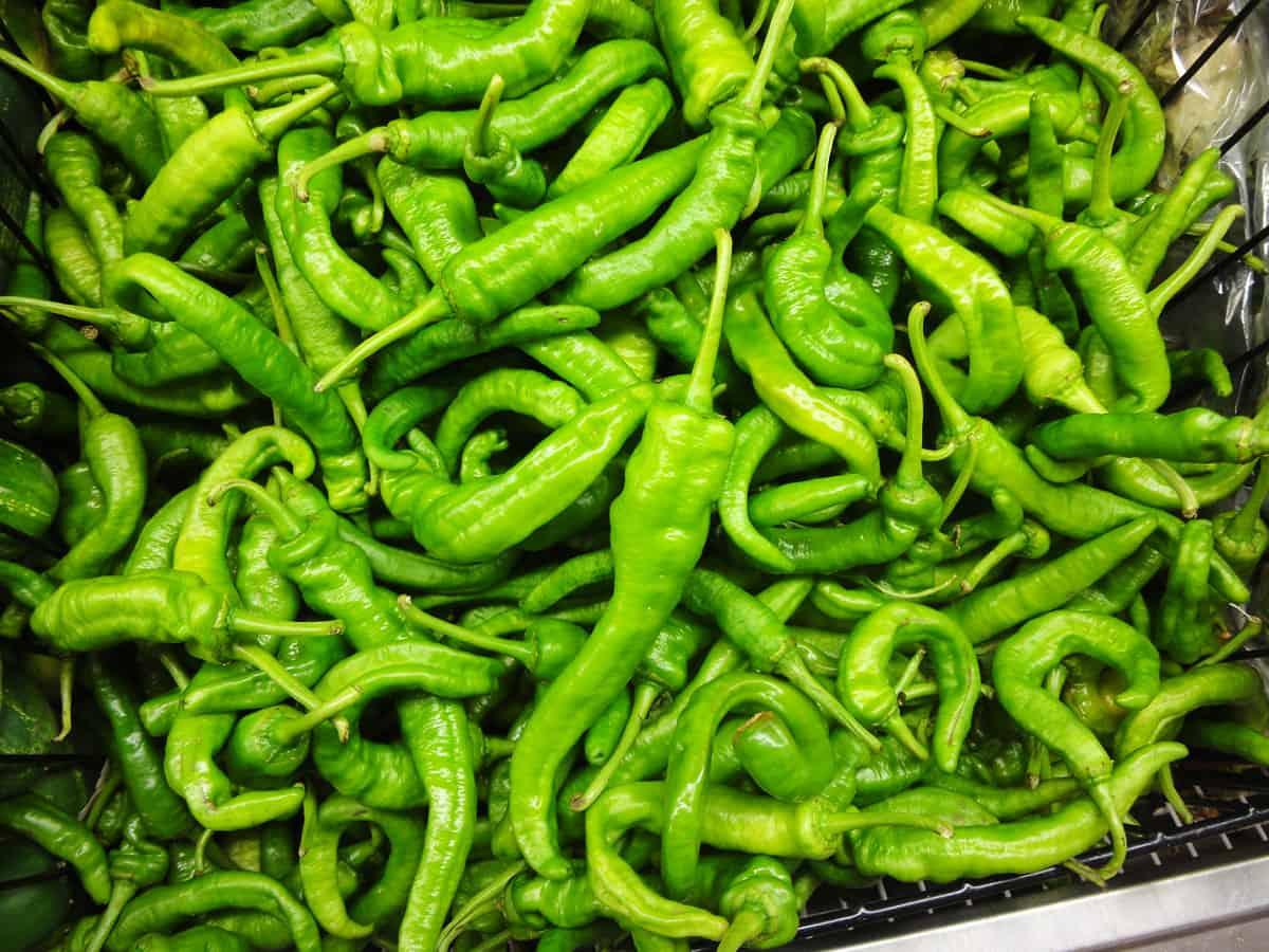 Green chili peppers (Cheong-gochu) - Korean cooking ...