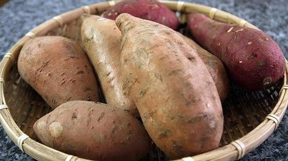 Sweet Potatoes Goguma Korean Cooking Ingredients Maangchi Com