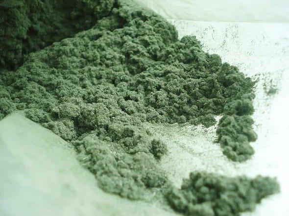 mugwortpowder1