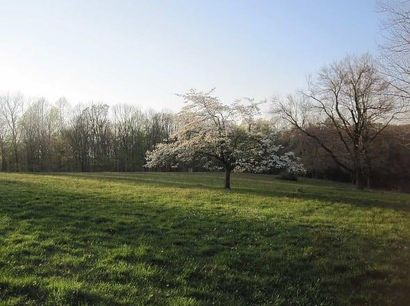 Putnam Park