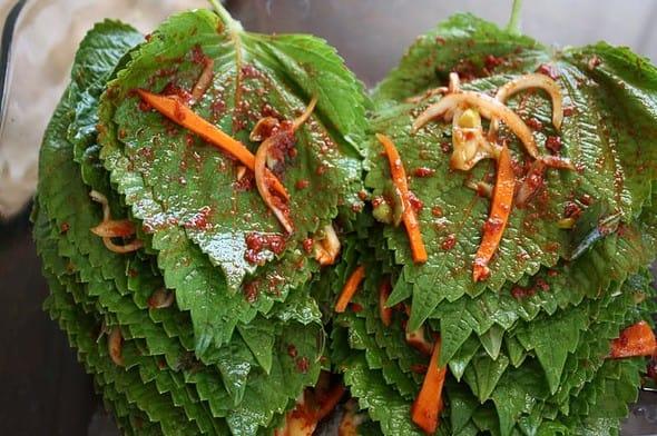 kkaennip-kimchi1
