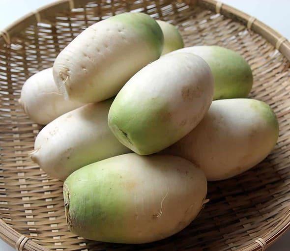 dongchimi radish