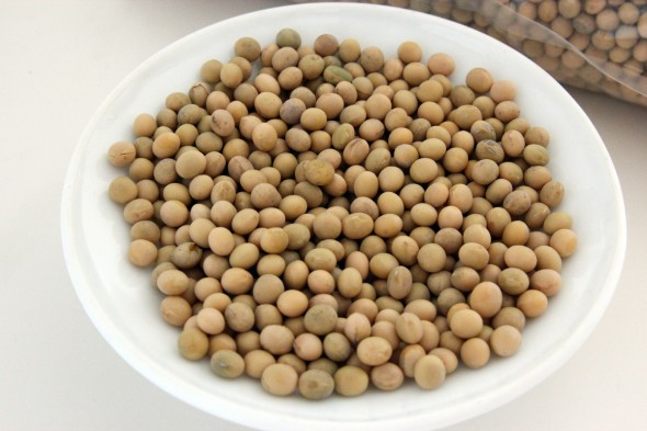 soybeans for sprouting