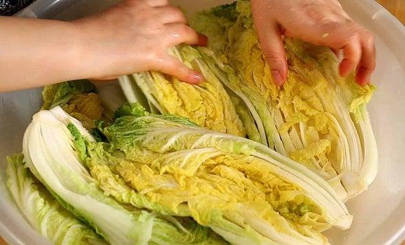 kimchi_cabbage salting (배추소금절이기)