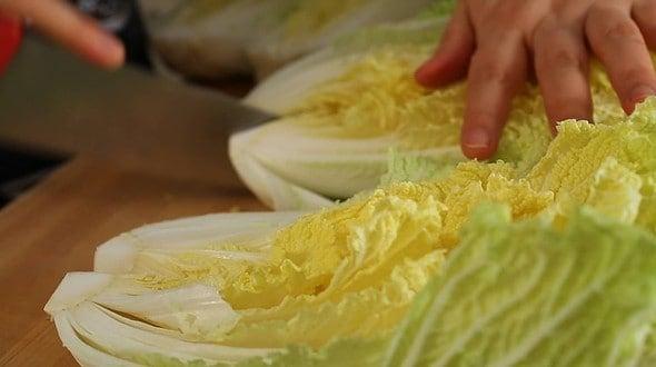 napa cabbage_cut (배추)