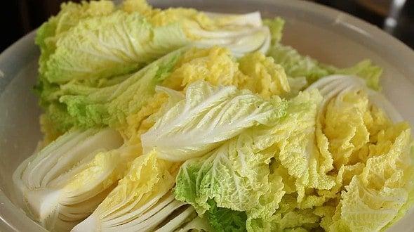cabbage_salting (배추 소금절이기)