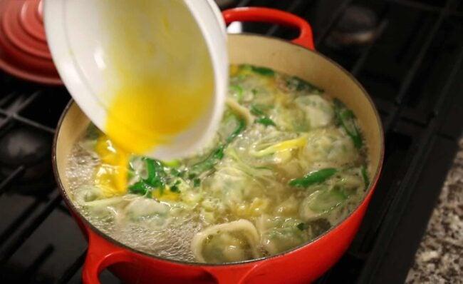 dumpling soup egg